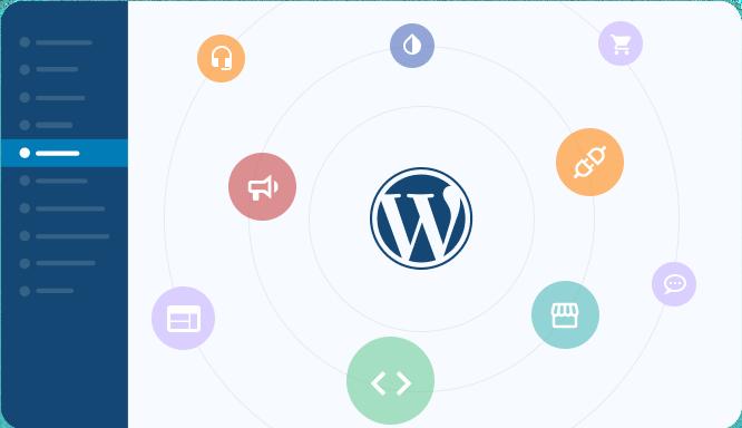 custom wordpress services