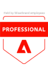 Professional Adobe